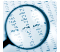 Federal and Local Government Audit Services